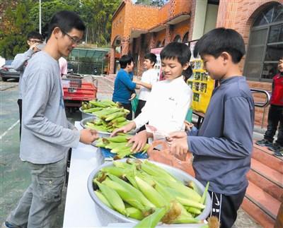 枫树小学童种玉米 义卖助弱势